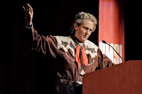 Temple Grandin Resume by Temple Athletics Temple S Basketball Vs St Louis Owlsports Update Student