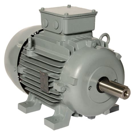 Electrical Motor Products by W20 Three Phase Motor Ie1 Zest Weg