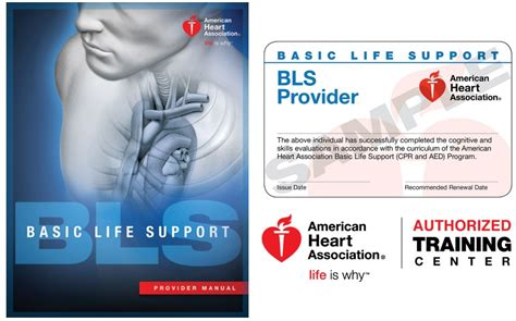 Students are handed out the cpr or bls card at the end of the training course. AHA Basic Life Support (CPR) - NEO: ACLS, BLS, PALS, NRP ...