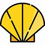 Shell Icons Icon
