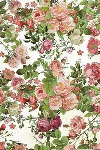 Papier Peint Fleuri Vintage : papier de fond fleuri tropical pinterest papier dessin fleur et jolie dessin ~ Melissatoandfro.com Idées de Décoration