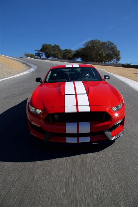 2016 ford shelby gt350 mustang and 2016 ford shelby gt350r