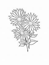 Daisy Coloring Flower Flowers Printable Mycoloring Recommended sketch template