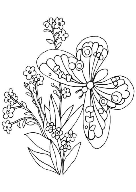 coloriage fleurs  papillon