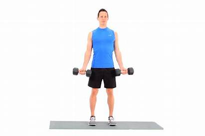 Curl Dumbbell Exercise Arm Workout Curls Bicep
