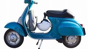 Hortensien überwintern Im Keller : moped mofa motorroller im keller abstellen berwintern lassen ~ Frokenaadalensverden.com Haus und Dekorationen