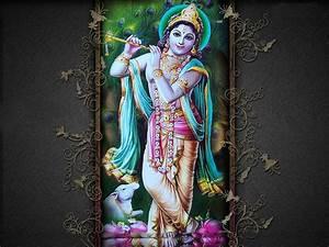 Jai Shri Krishna Desktop HD Wallpaper Free Download ...