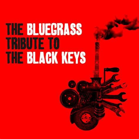 The Bluegrass Tribute To The Black Keys
