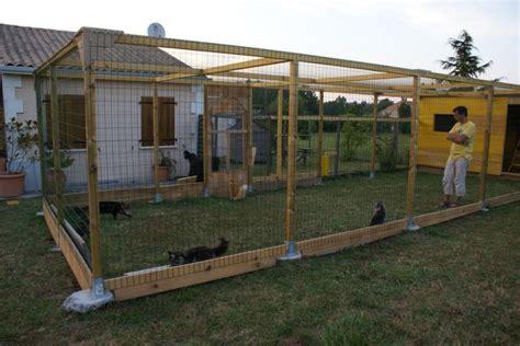 cage pour chat exterieur le deuxi 232 me enclos ext 233 rieurl chatterie des lynx d amarine