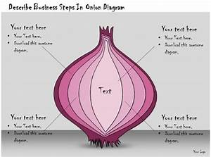1113 Business Ppt Diagram Describe Business Steps In Onion