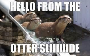 Hello Funny Meme Adele
