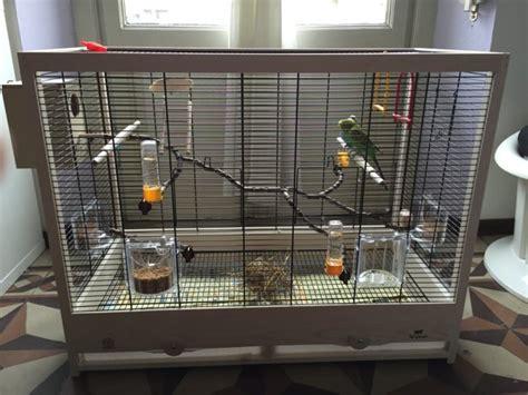 gabbia per cocorite accessori gabbia e nido cocorite e pappagallini ondulati