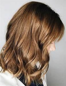 Chocolate Light Brown Hair - Brown Hairs