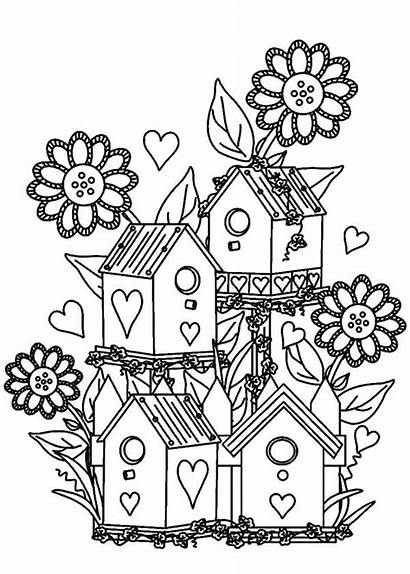 Coloring Pages Garden Flower Bird Gardens Birdhouse