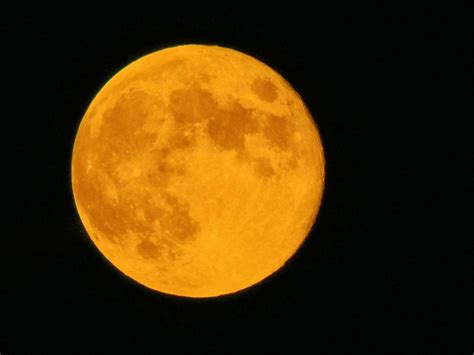 let your light shine harvest moon