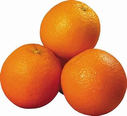 Orange Transparent Fruits Nuts Pngimg