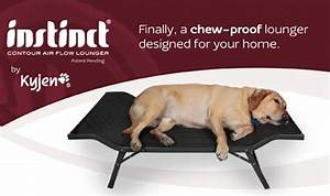 compare kyjen instinct air flow bed medium gray b948yw With shred proof dog bed