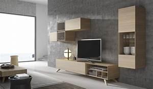 Meuble Tv Contemporain Design Ides De Dcoration