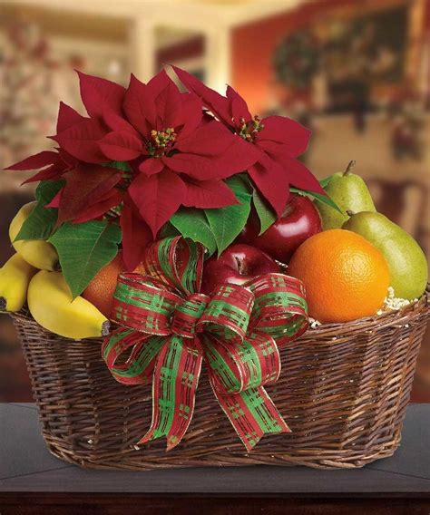 christmas poinsettia plant and holiday fruit basket gift