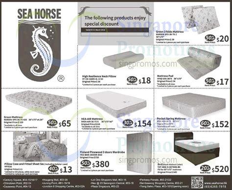 sea horse  mar  sea horse     promo
