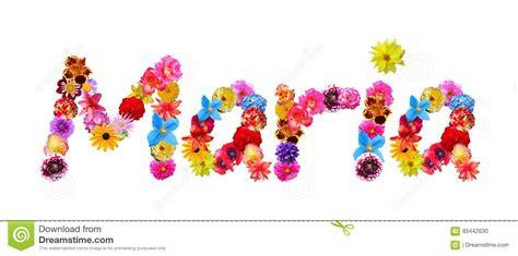 nome di fiore nome dei fiori illustrazione di stock illustrazione