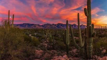 Desert Arizona Title