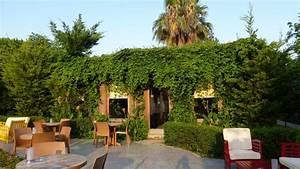 can garden beach side o holidaycheck turkische riviera With katzennetz balkon mit can garden beach side video