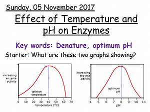 Effect Of Temperature And Ph On Enzymes By Ak00190