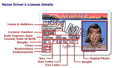 drivers license bureau driver s license id card