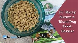 Dr  Marty Nature U0026 39 S Blend Dog Food Review  Our Verdict