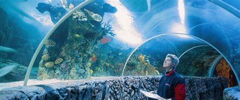 sunparks se trouve 224 proximit 233 de sea blankenberge sunparks