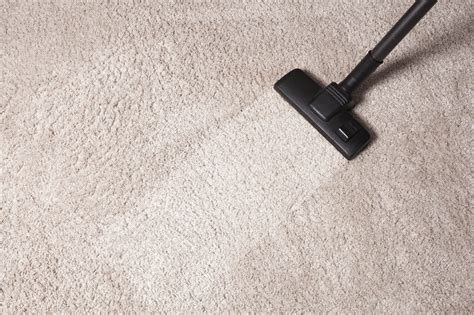 Carpet Cleaning East Orange, Nj Pros  9738665621  Rug. Taxi Fleet Management Software. Nashville Roofing Company Diploma Online Test. Application White Listing Cable Package Deals. Website Professional Design Hnb Bank Online. Why Become A Pharmacist Data Warehouse Salary. Fashion Design Schools In Philadelphia. Moving Companies In Schaumburg Il. Color Print Cost Per Page United Service Auto
