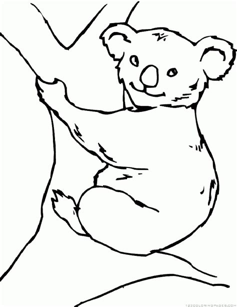 koala coloring pages part