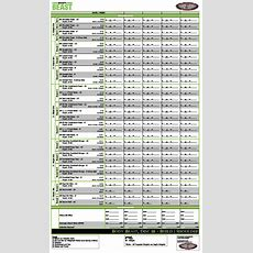 Ultimate Body Beast Worksheets  Team Right Now Fitness (beachbody Coaching