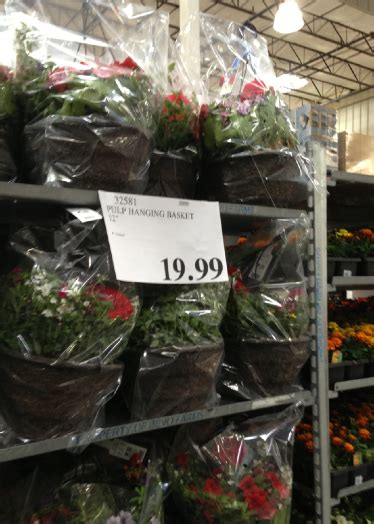 costco garden deals plant prices planters miracle gro