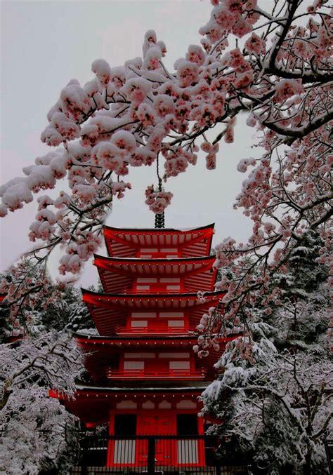 japon  enamora enamora japon kyoto aesthetic