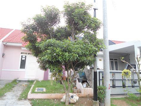 rumah pohon obat gamis murahan