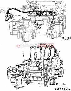 4941811  Saab Cable Harness