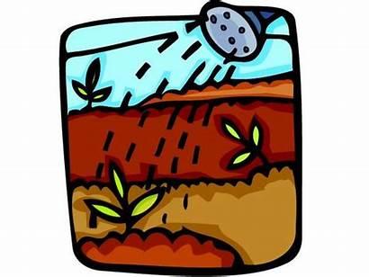 Irrigation Clipart Clip Produce System Sprinklers Sprinkler