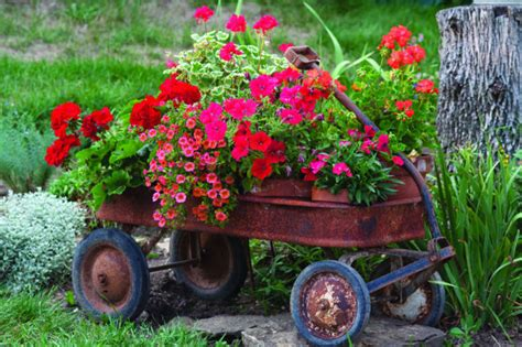 Pins On Pinterest Garden Containers  Home And Garden