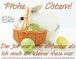 Frohe Ostern Lustig : frohe ostern der job war echt einfacher als ich noch ein kleiner hase war ~ Frokenaadalensverden.com Haus und Dekorationen