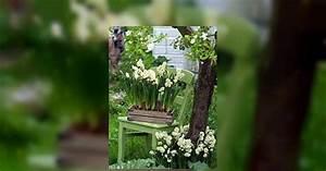 Garten Im März : garten im m rz sch dlingsbek mpfung das haus ~ Lizthompson.info Haus und Dekorationen