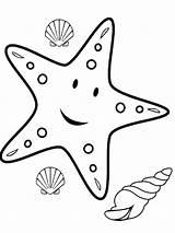 Starfish Coloring Animal sketch template