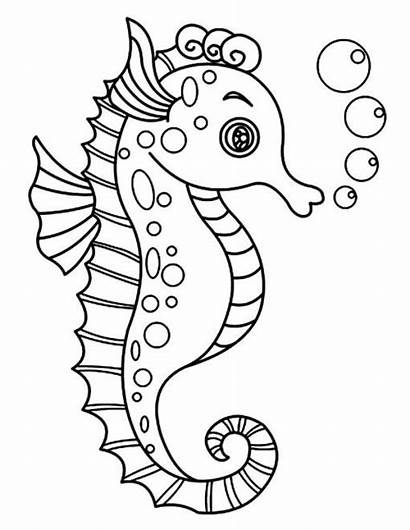 Sea Coloring Seahorse Pages Horse Drawing Toddlers