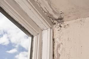 Feuchtigkeit Am Fenster : schimmel vermeiden archive schimmel entfernen ~ Watch28wear.com Haus und Dekorationen