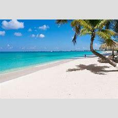 Las Mejores Playas Del Mundo Según Los Miembros Del Sitio Web Tripadvisor