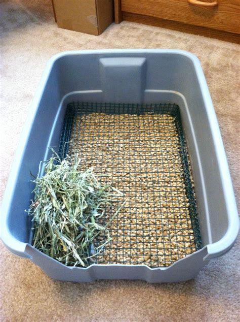 best rabbit litter box pigs n buns small pet rescue non diggable bunny litter box
