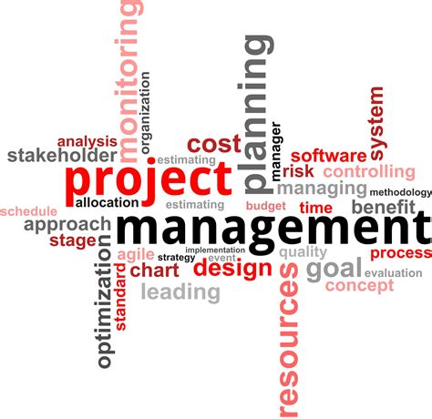 program management project program portfolio management idt consulting services inc