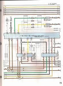 Stock Car Wiring Diagram