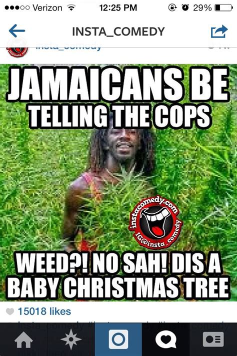 fi wi jamaica images  pinterest jamaican meme